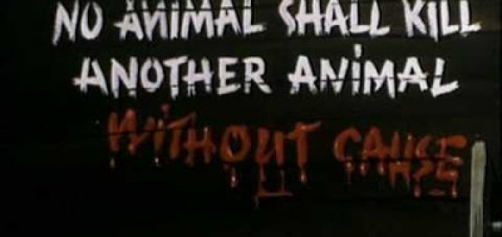 Best Animal Farm Quotes